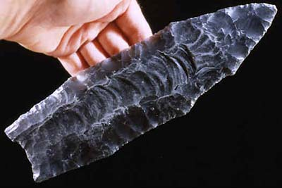 A Clovis point. Big and sharp, the new weapons allowed the invaders to kill even the largest animals.