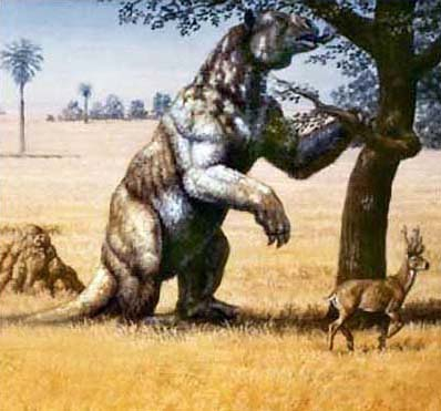 A megatherium, or giant ground sloth, on the plains of South America. Relatives the size of elephants once lived in Florida.